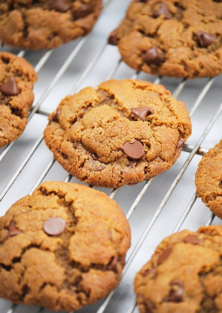 Gluten Free Peanut Butter Chocolate Chip Cookie-3